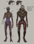Nude Turian Concepts